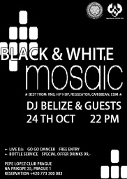 BLACK & WHITE MOSAIC